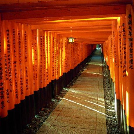 A Visit to Kyoto Inari Shrine