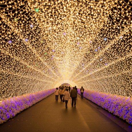Nabana no Sato Illumination