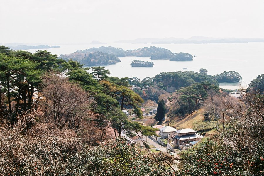 Matsushima Bay in the Spring