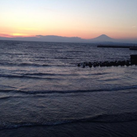 Tiny but beautiful; Enoshima island