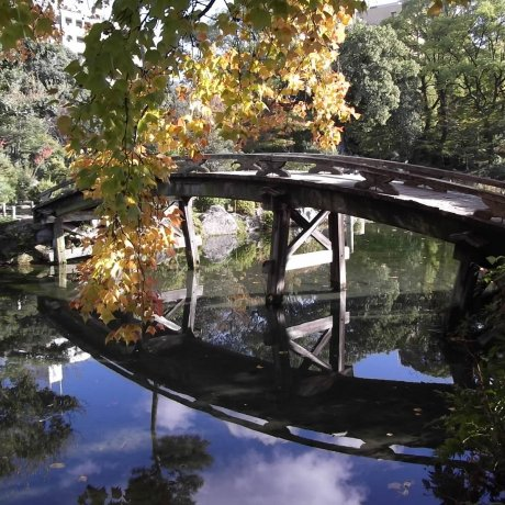 Reflections of Shosei-En, Kyoto