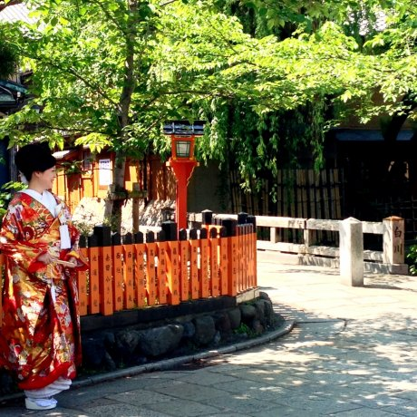 A Springtime Wedding in Kyoto
