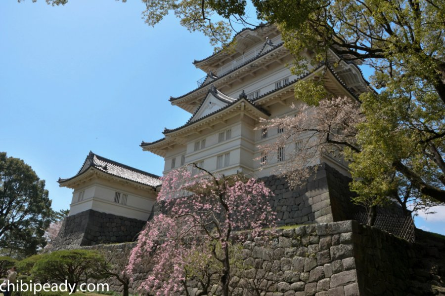 Fascinated by Odawara Castle