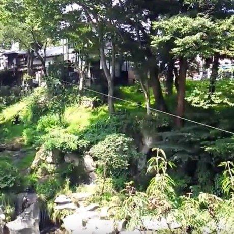 Flying Dango in Iwate