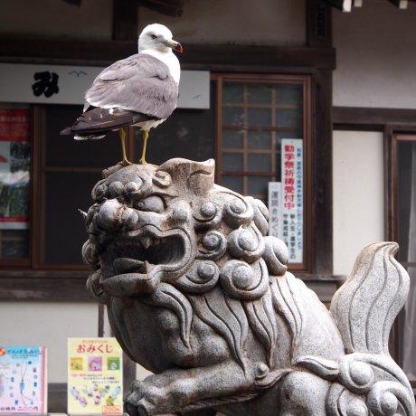 Kabushima Shrine: Seagull Island