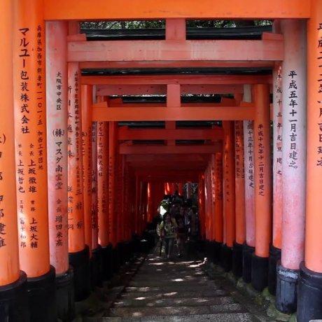 Voyage around Fushimi Inari Shrine