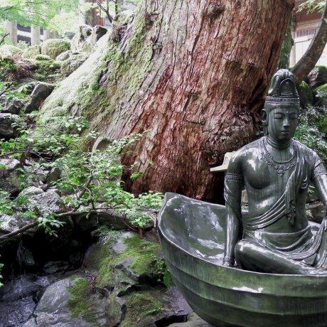 Silent Path to Eiheiji Temple