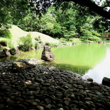 Yokokan Garden: Summer Stroll