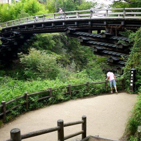 Saruhashi - the Monkey Bridge