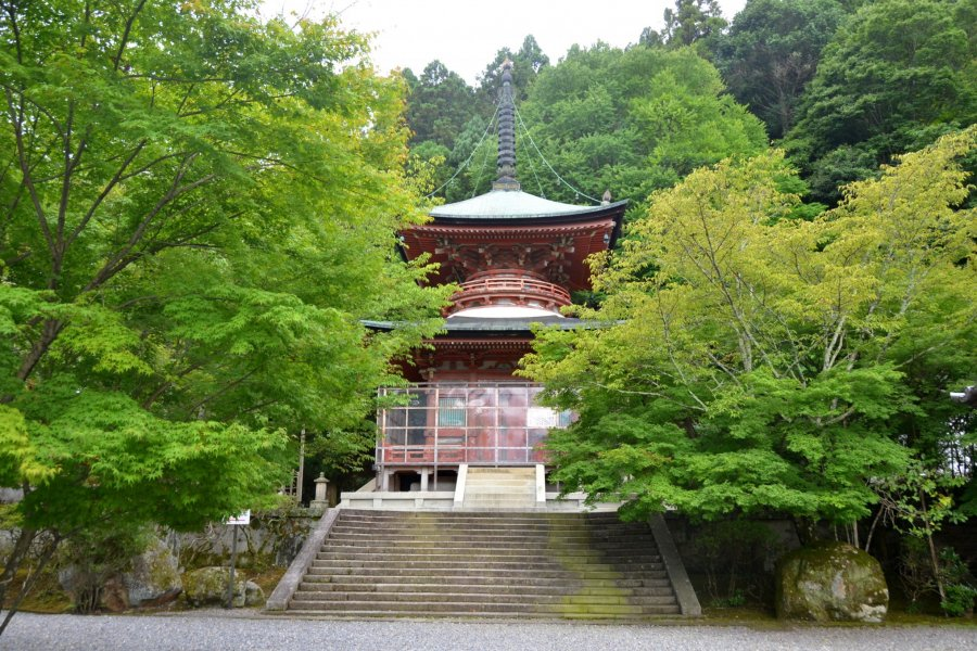 Dendengu Shrine & Horinji Temple