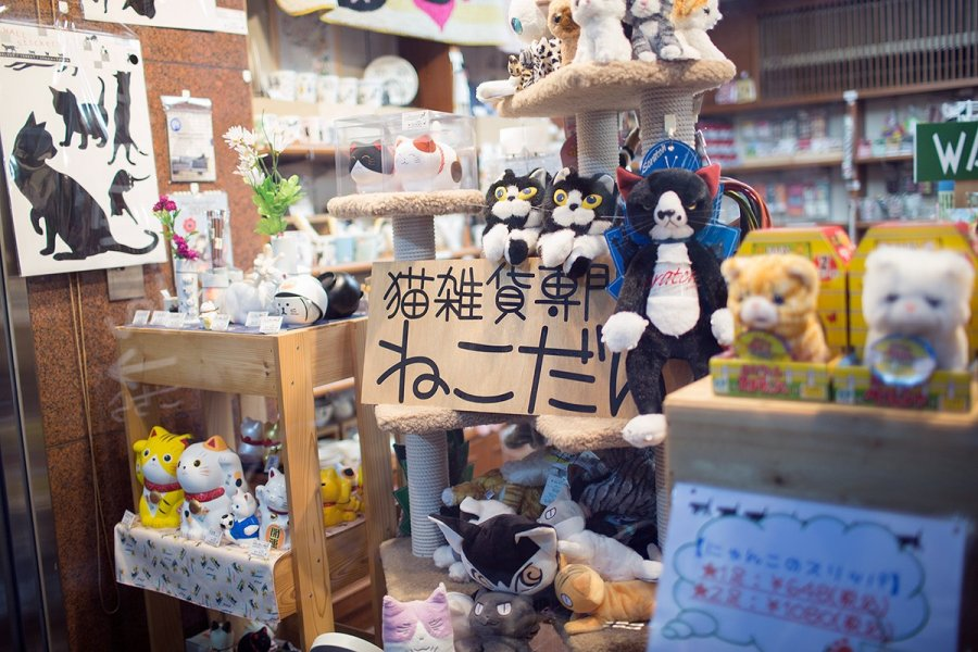 Necodan Cat-themed Gift Store