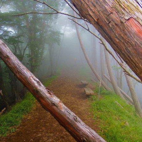 Yabitsu-Pass to Mount Oyama
