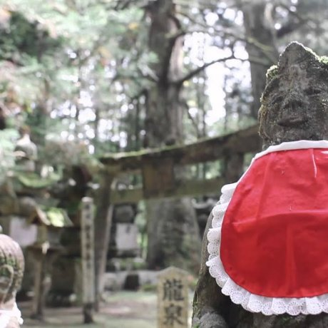 Ekoin: A Journey through Koyasan