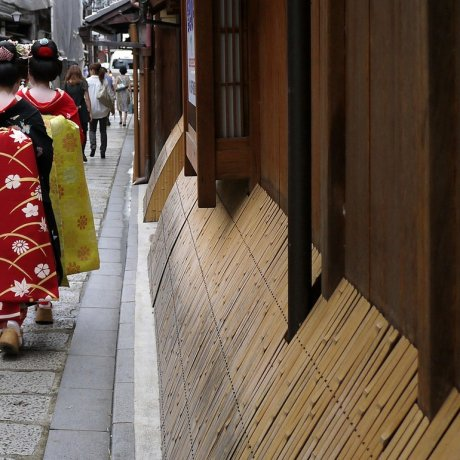 Exploring Gion