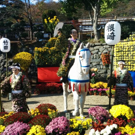 Nihonmatsu Chrysanthemum Festival