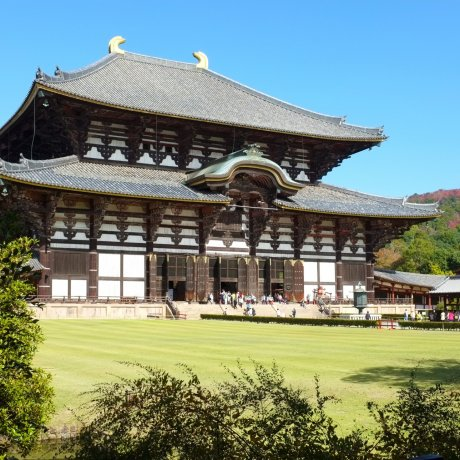 The Great Todaiji Temple