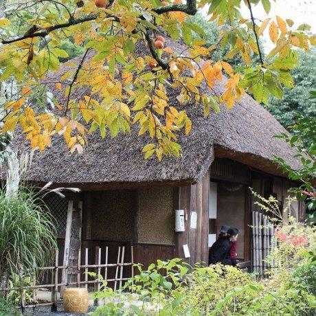Kyoto's Poet's House Rakushisha