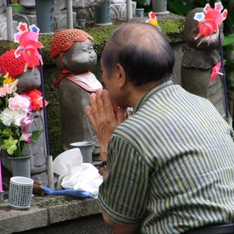 The Jizo Statues of Zojo-ji Temple