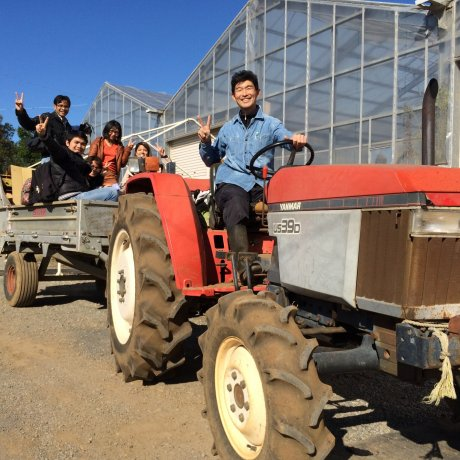 Yokota Farm in Chiba City