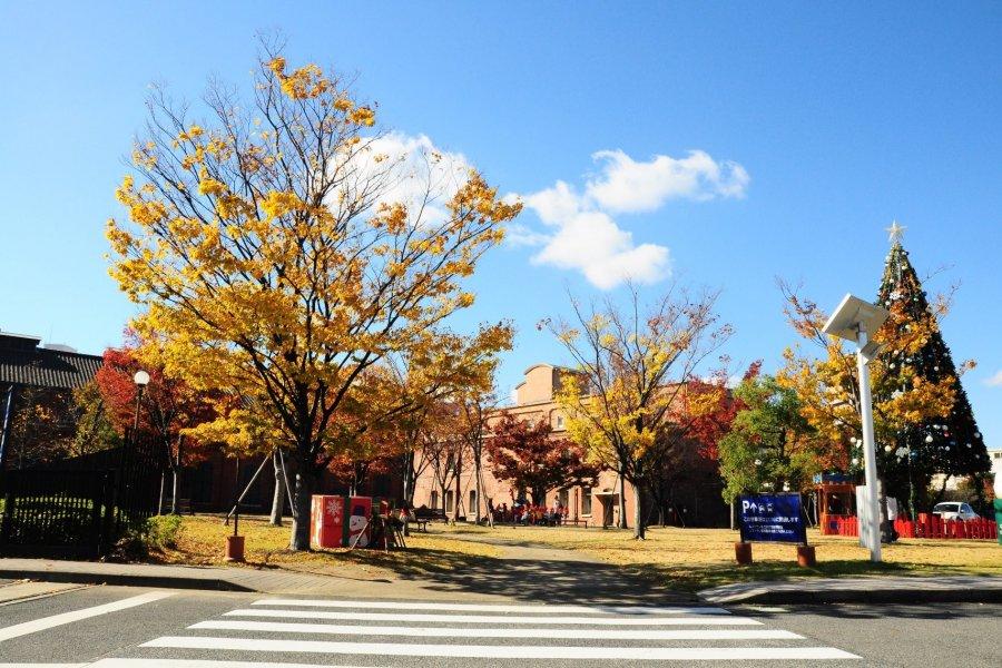 Noritake Garden in Autumn