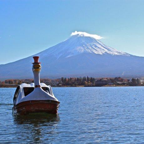 Swan Boat Rental, Lake Kawaguchiko