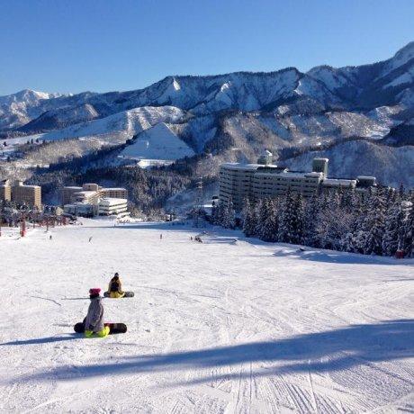 Tokyo Family Skiing Made Easy