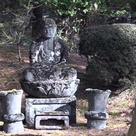 History of Nikko