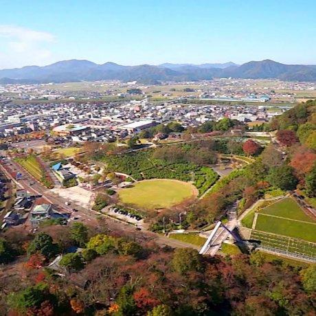 Flying Over Nishiyama Park in Fall