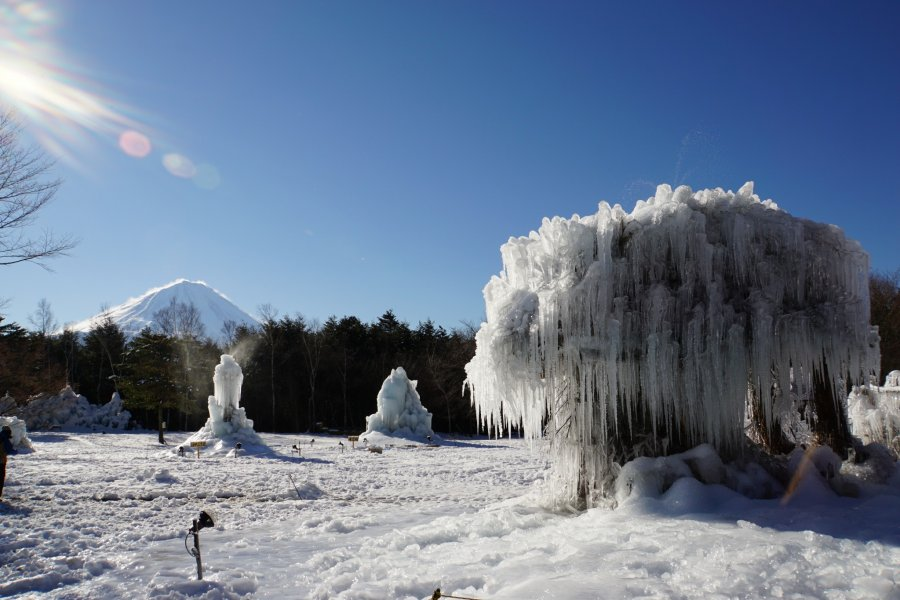 Lake Saiko Ice Tree Festival