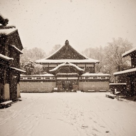 Winter at the Edo Tokyo Architectural Museum
