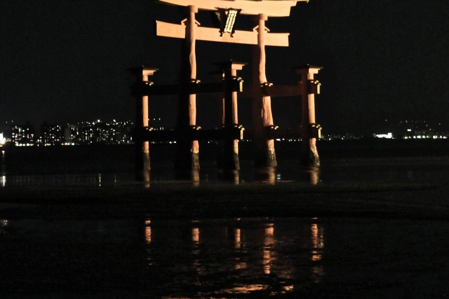 Mysterious Miyajima at Night