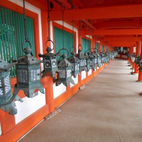 Kasuga Taisha Shrine, Nara
