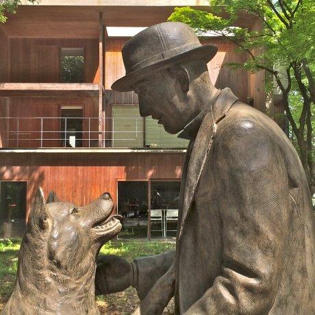 Hachiko Statue University of Tokyo