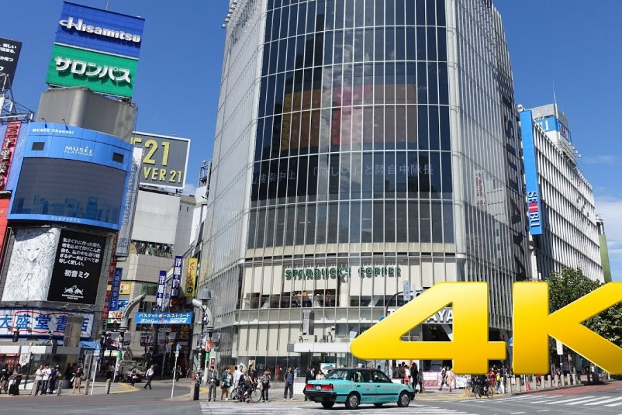 Watch Tokyo's Shibuya Crossing