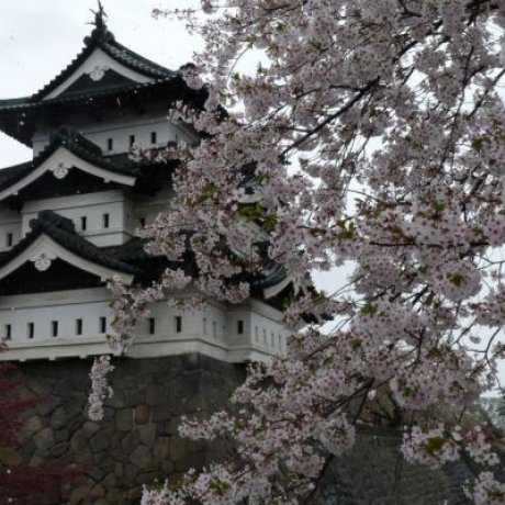 Hirosaki Castle to be Relocated