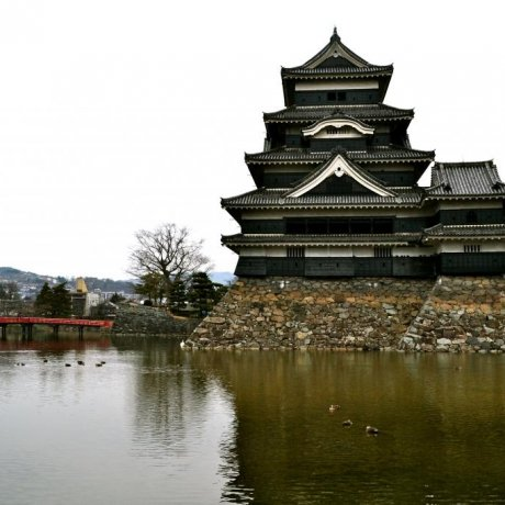 A National Treasure: Matsumoto Castle