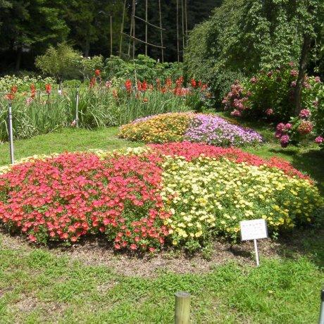 Handayama Botanical Garden