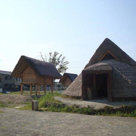 Toro Archeological Site