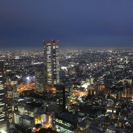 Tokyo at Day, Sunset, then Night