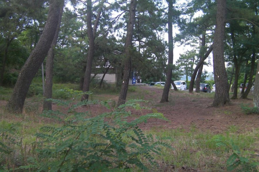 Yanagijaya Campground