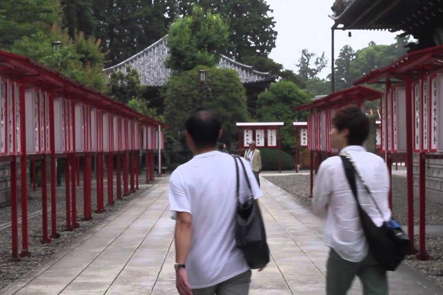Exploring Okinawa, Tokyo and Narita