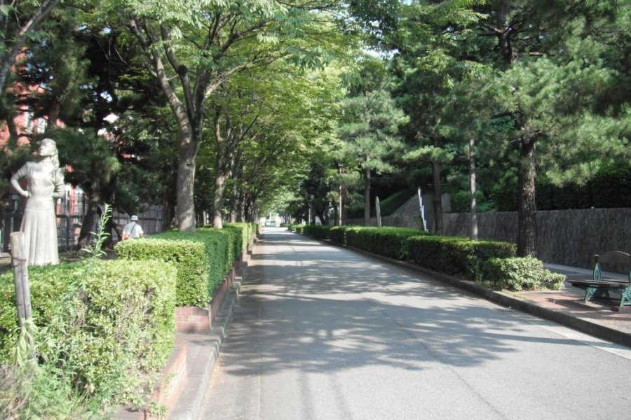 Avenue to the Art Museum, Kure