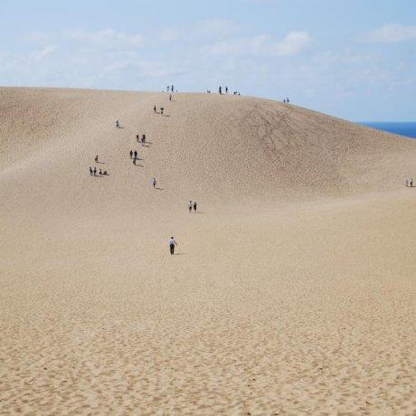 A Grain of Film History: Tottori Sand Dunes