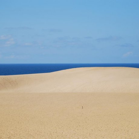 More of Tottori Sand Dunes