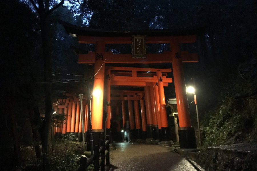Fushimi Inari Taisha at Night