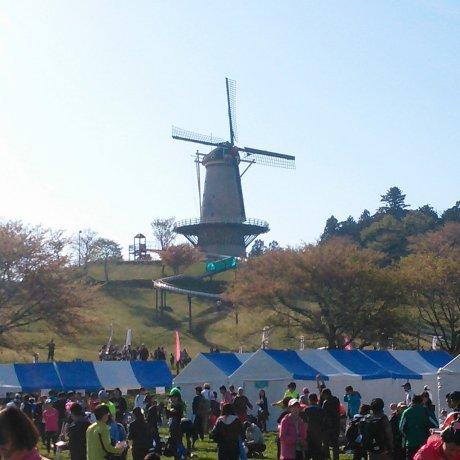 Tohoku Food Marathon & Festiv
