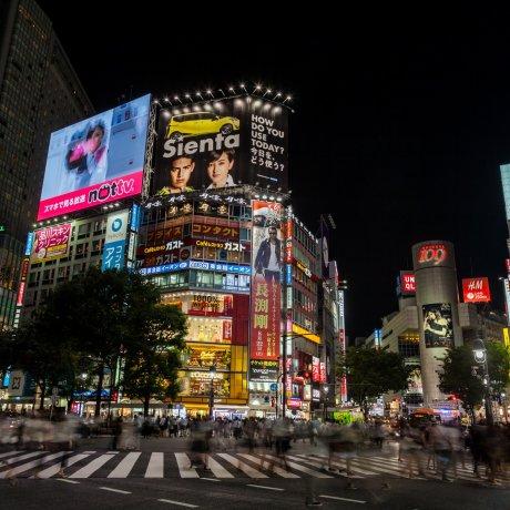 "Shibuya Crossing - ""The Scramble"""