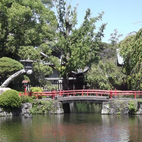 Tokyo Day-Trips: Mishima