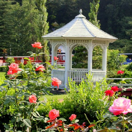 The Fairy Garden in Izu City