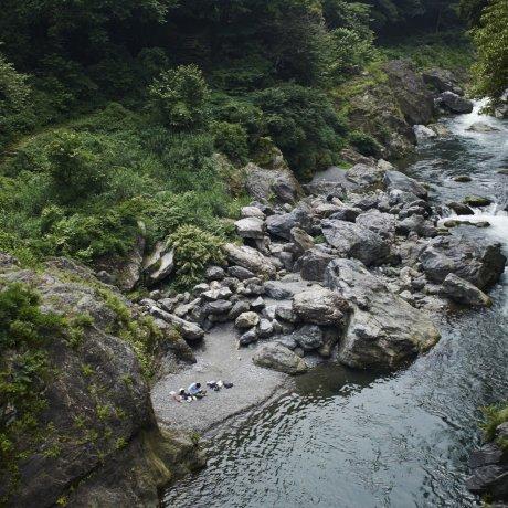 Otama Trail